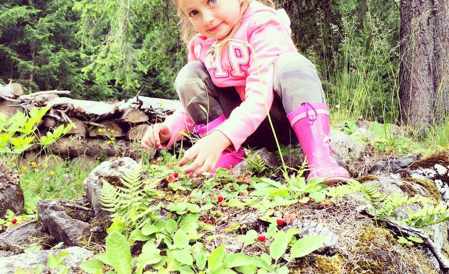 Escursioni in montagna adatte ai bambini